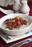 Duck With Rice Royalty Free Stock Photos