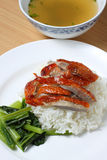 Duck With Rice Royalty Free Stock Image