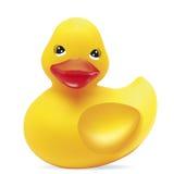 ducka gummi Royaltyfria Foton