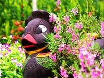 Ducka statyn i trädgården med blommor dekorerad bakgrund arkivbild