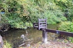 Ducka stolen, Christchurch, Dorset Royaltyfria Foton
