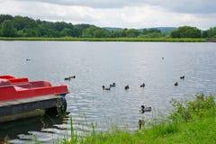 duckar laken Arkivfoto