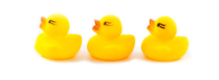 duckar rubber leksaker på en vit bakgrund Royaltyfria Bilder