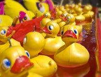 duckar rubber lott royaltyfri fotografi