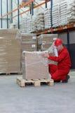 Duckende Arbeitskraft, die Kasten auf Ladeplatte einwickelt Stockfotografie