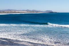 Duckender Surfer stockbilder