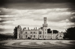 Ducket's Grove Stock Photography