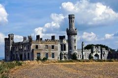 Duckett's Grove Castle stock photo