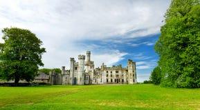 Ducketts树丛、一个被破坏的19世纪伟大的房子和前庄园塔和塔楼在爱尔兰 库存图片