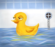 Duckie Royalty Free Stock Photography