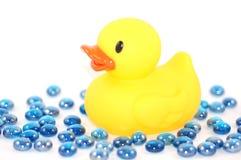 Duckie avec des marbres de l'eau Photographie stock
