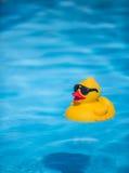 Duckie de borracha Imagem de Stock Royalty Free