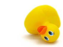 Duckie de borracha caído Fotografia de Stock