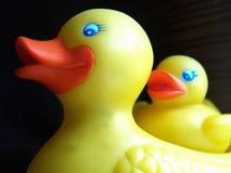 Duckie en caoutchouc Images stock