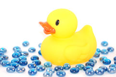 Duckie with water marbles Stock Photography