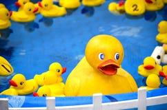Duckies de borracha em um jogo do carnaval Imagem de Stock