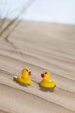 Duckies in de woestijn Stock Fotografie