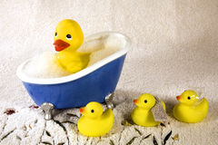 Duckies en caoutchouc Images stock