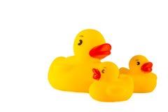 Duckies en caoutchouc Photo stock