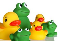 Duckies and Froggies (Closeup) Stock Images