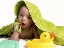 Duckiling and sponge. Bathing of the infant Stock Photography
