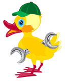 Duckling in cap and with key Royalty Free Stock Photography