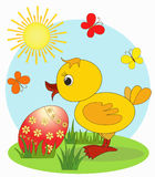 Duckling. Easter card Royalty Free Stock Photography