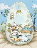 Duckling egg shell Stock Photos