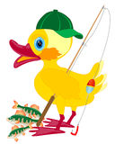 Duckling fisherman with fishing rod Royalty Free Stock Photo