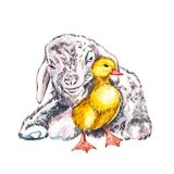 Duckling and goat watercolor illustration. Easter set. Hand painted card with traditional symbols isolated on white