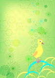 Duckling on a green background Royalty Free Stock Photos