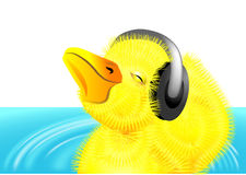 Duckling with headphones Royalty Free Stock Photo