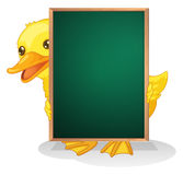 A duckling holding a blackboard Royalty Free Stock Photography