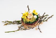 Duckling med ägget Arkivfoton