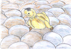 Duckling sitting on eggs, drawing Stock Photos