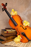 Ducklings on classical violin Stock Photography
