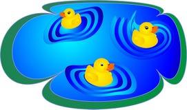 Ducklings Having Fun Royalty Free Stock Photography