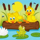Ducklings looking at frog Stock Photo