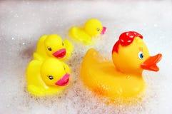 ducks желтый цвет резины семьи Стоковые Изображения RF