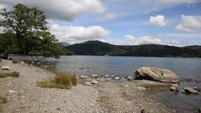 Ducks причаливая район Англия Великобритания озера Windermere камеры на красивый летний день с голубым небом акции видеоматериалы