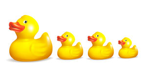 Ducks. Family of rubber ducks, isolated on the white Stock Photo