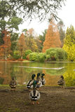 Ducks in autumn Royalty Free Stock Photo