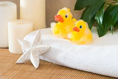 Ducks in Bathroom Royalty Free Stock Images