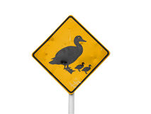 Ducks Crossing Sign Stock Photo