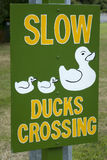 Ducks crossing sign. Strange road sign in New Zealand Royalty Free Stock Photos