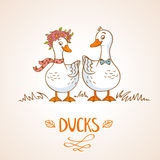 Ducks stock illustration