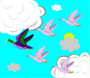 Ducks fly on the south. Stock Images