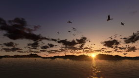 Ducks flying, timelapse clouds with sea and mountain ridge, stock footage stock footage