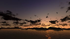 Ducks flying, timelapse sunrise with sea and mountain ridge, stock footage stock video footage