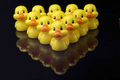 Ducks in formation. A V shaped wedge of plastic yellow ducks sit on a shiny black surface.  the reflection of the ducks is seen in the surface Stock Images